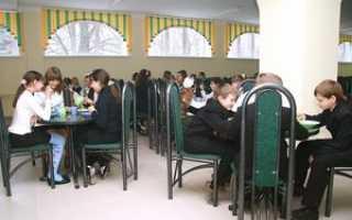 Организация питания в школе: какие существуют нормы, положения и правила