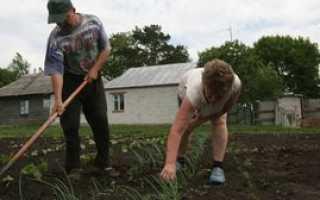 Льготы по земельному налогу: кому положены и правила их оформления