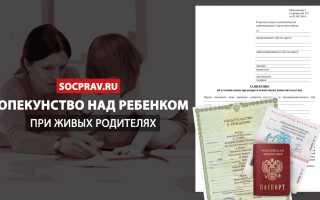 Опекунство над ребенком при живых родителях: оформление, документы