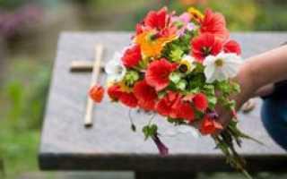 Размер пособия на погребение: сумма компенсации в различных ситуациях