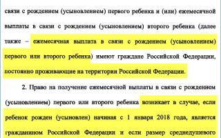 Путинские выплаты при рождении ребенка: что такое и кому положено президентское пособие