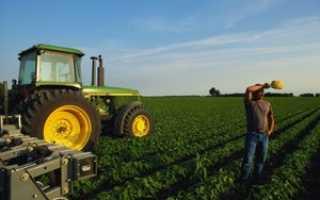 Бизнес-план для получения гранта 1500000 руб. для сельского хозяйства: особенности составления