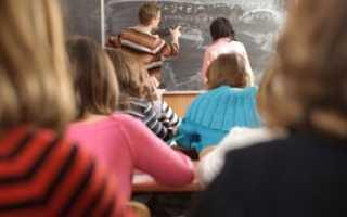 Стимулирующие выплаты учителям: критерии получения, размер и порядок оформления