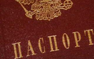Правила получения паспорта в 14 лет: документы и порядок процедуры в МФЦ, Госуслугах