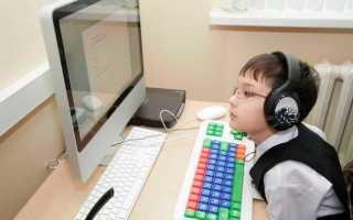 Правила обучения в дистанционной школе для детей-инвалидов в Новосибирской области